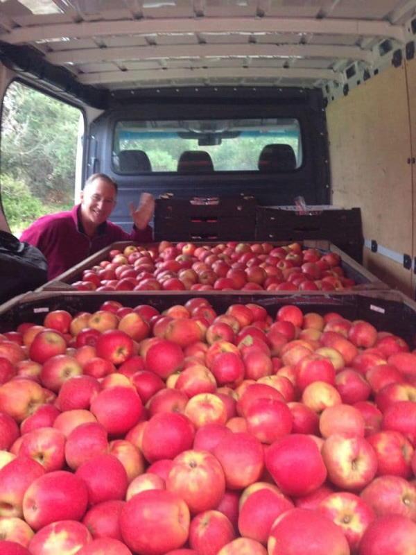 Rieshieck Orchards